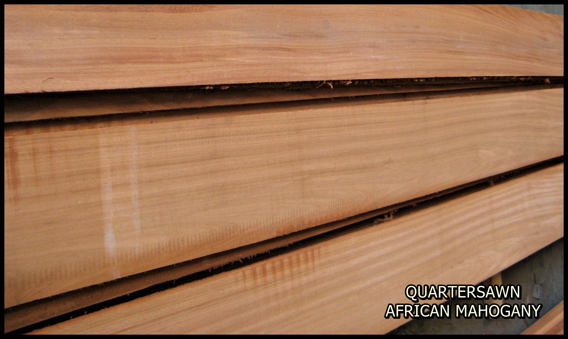 1 Rw L Sel Btr Brown Red Leaf Soft Maple K D Rgh
